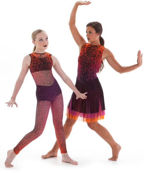 Mesh animal print dance costume and skate dress