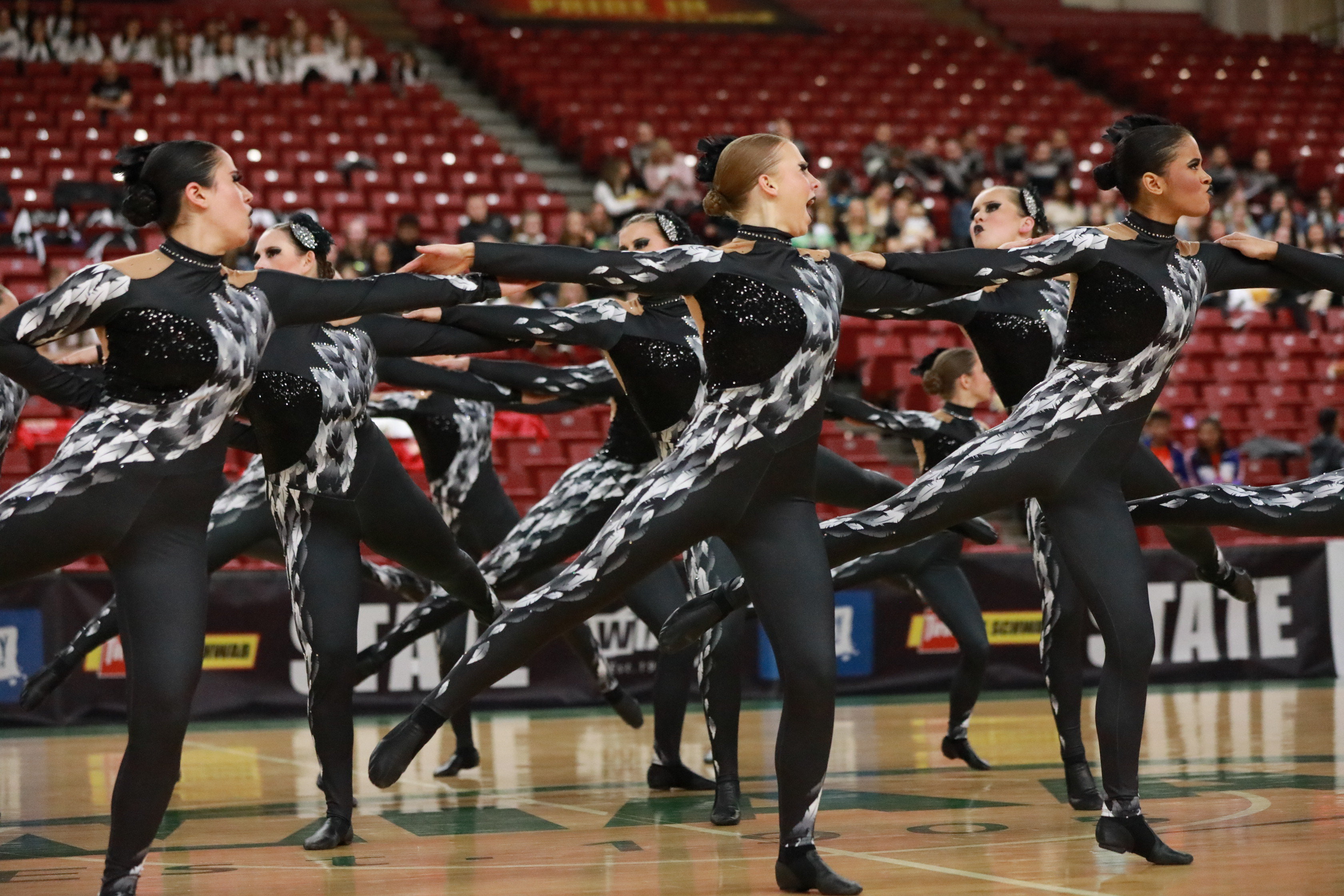 Liberty High School Washington State Dance Competition Kick costume