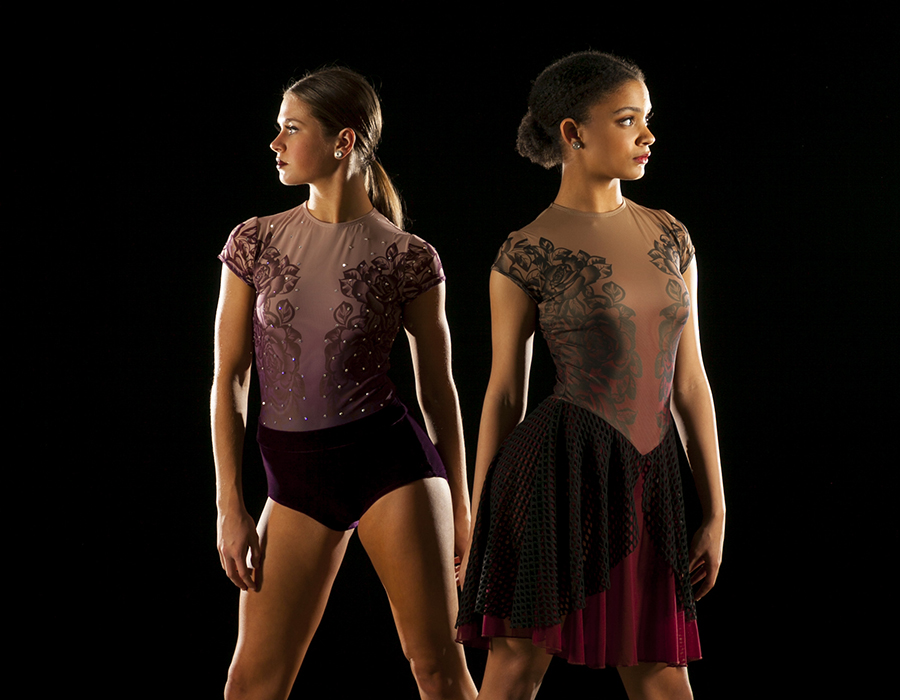 Vineyard Leotard  Modified Vineyard Skate Dress_2_Cropped