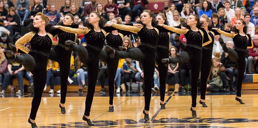 Sequin Dance Costume for High Kick Dance Costumes .jpg
