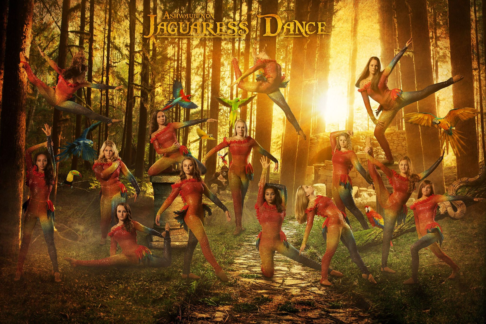 Ashwaubenon High School Dance Team Custom High Kick Costume
